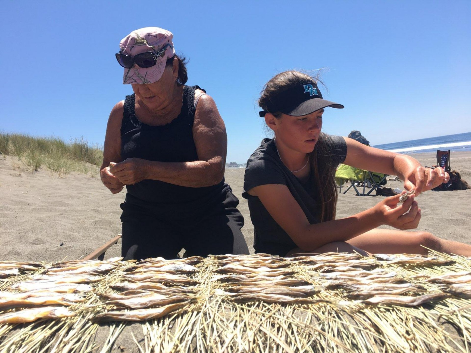 Norene Darnell and Tsinte Steinruck drying smelt on beach grasses. | Photo by Cynthia Ford.
