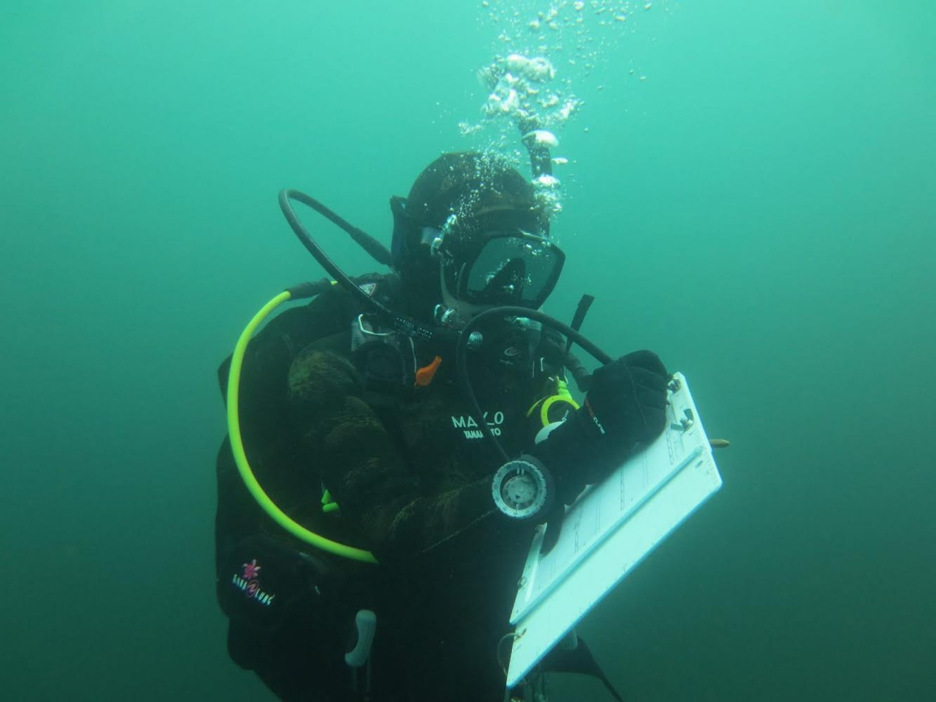 Angela Edmunds on a Scientific Dive | Photo courtesy of Hannah Johnston