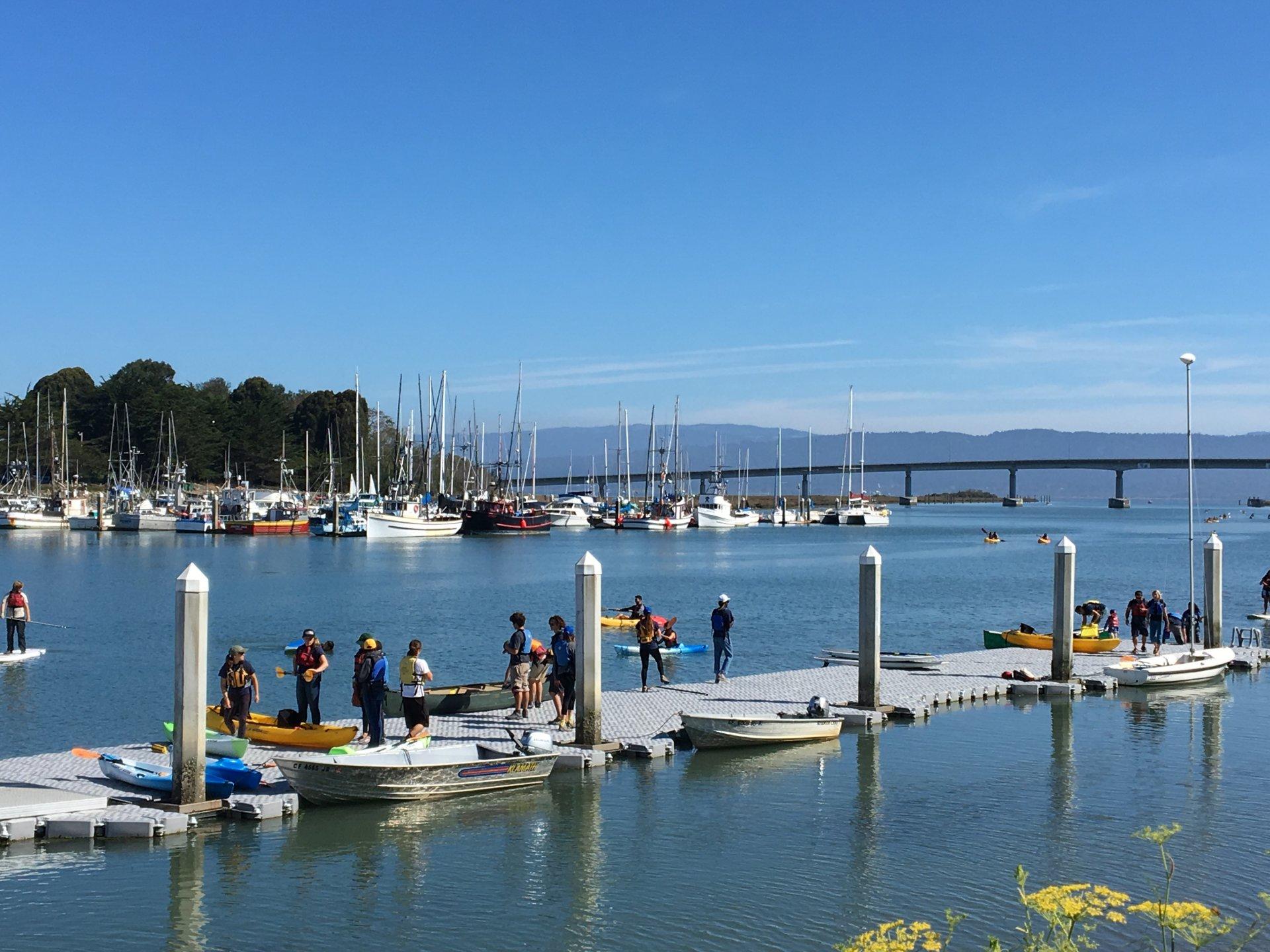 Students coming back to the dock. Photo credit: Charlotte Rutigliano