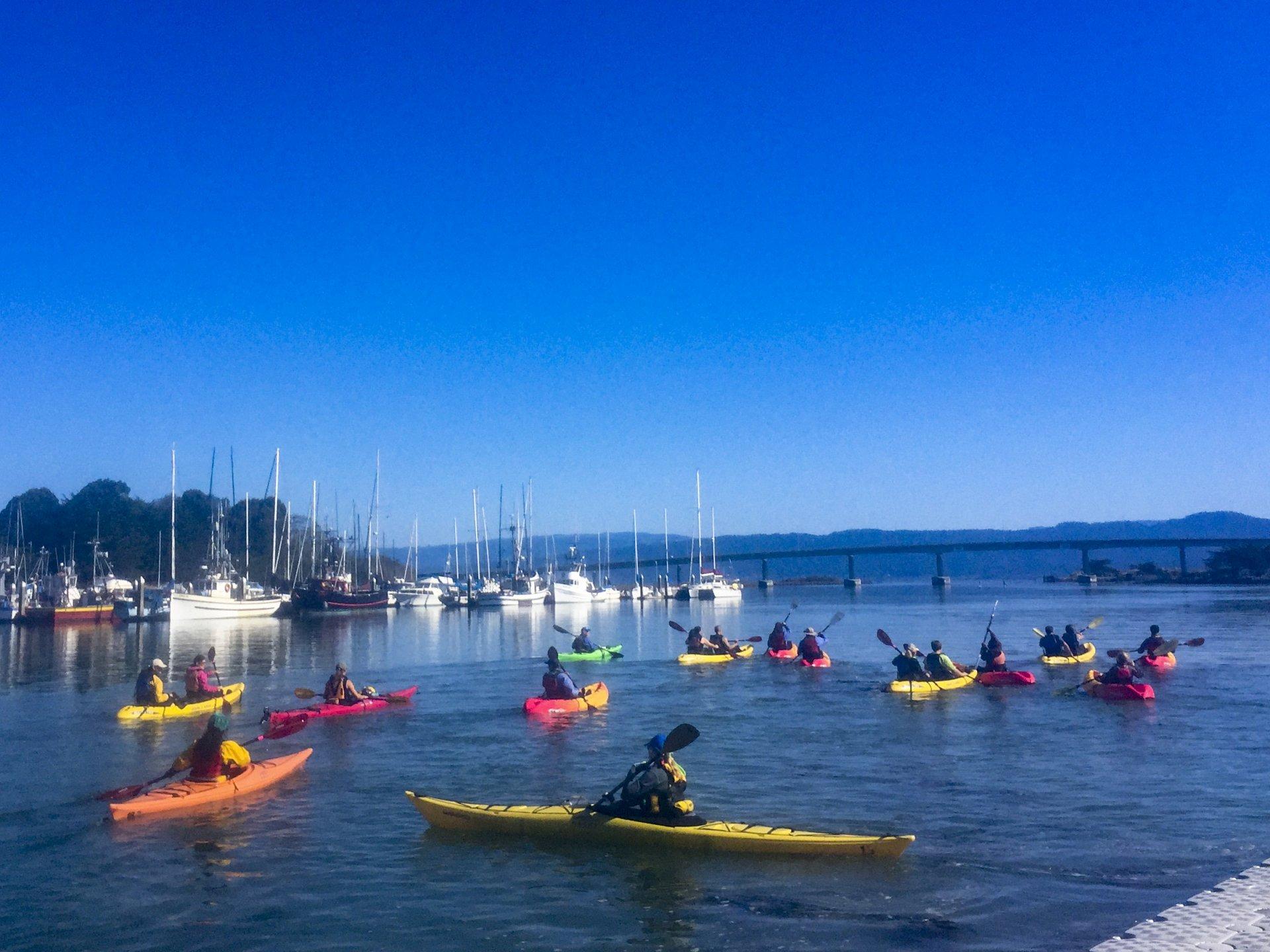 Paddle Fest at Humboldt Bay Photo credit: Reza Sadeghzadeh