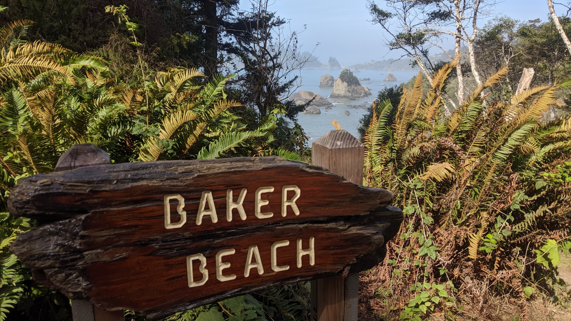 Baker Beach is an awesome coastal spot along Scenic Drive. | Photo by Jett Williams