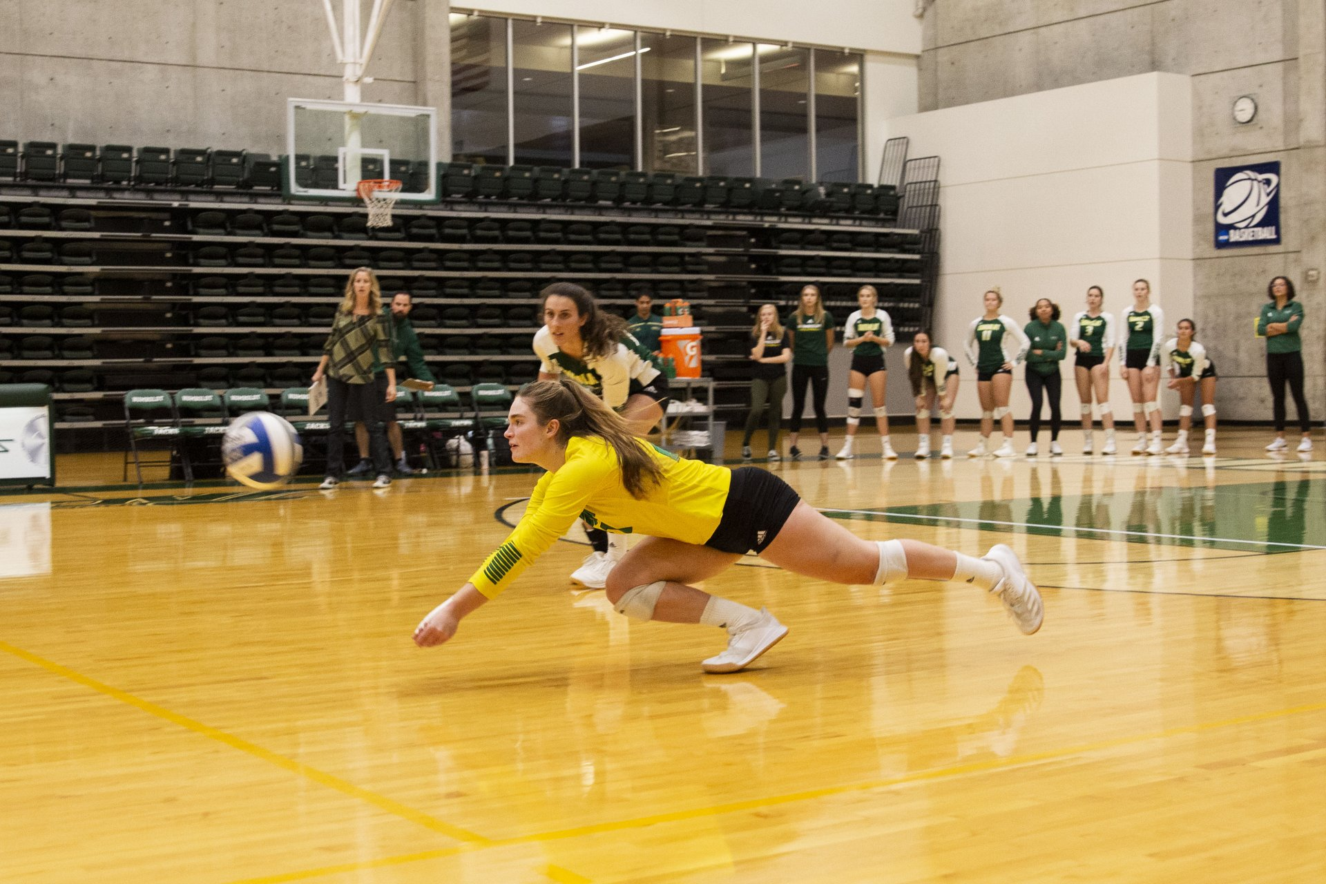 Humboldt State's Odelia Ryan makes a diving effort to keep the play alive during the Jacks' match against Chico State at Lumberjack Arena on November 1. | Photo by Thomas Lal