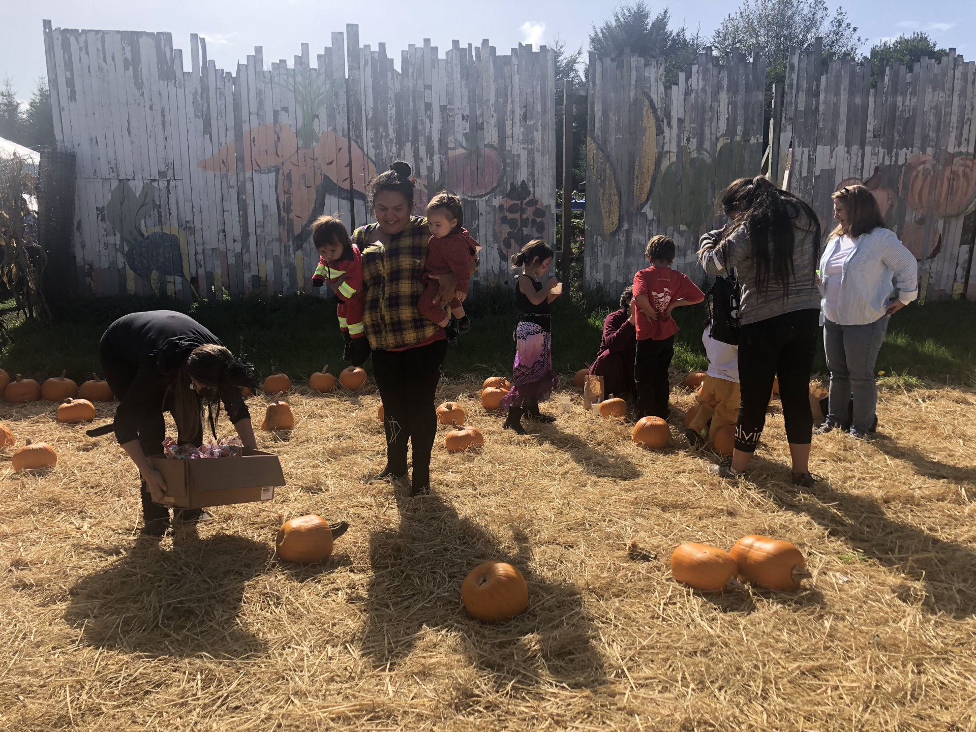 Parents and teachers help visiting children pick out their pumpkins on Oct. 18 at the Annual United Indian Health Services Harvest party.