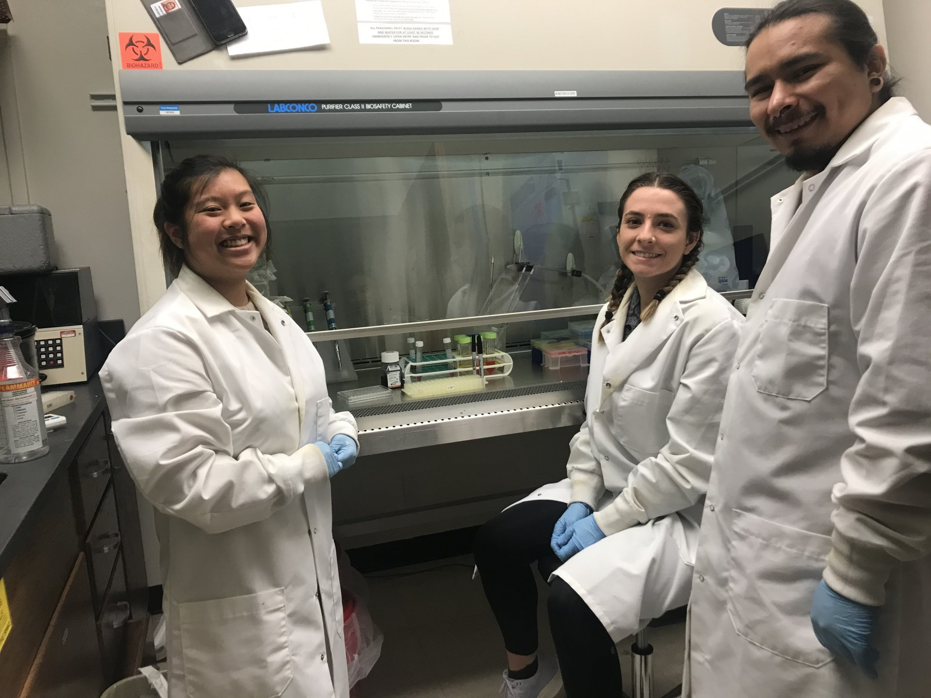 Lisa Ko, Jackie Rose and James Gomez research cellular autophagy in the cell culture lab. The lab is bio safety two, meaning the students need to wear gloves and lab coats to avoid contaminating their science. | Photo by Collin Slavey