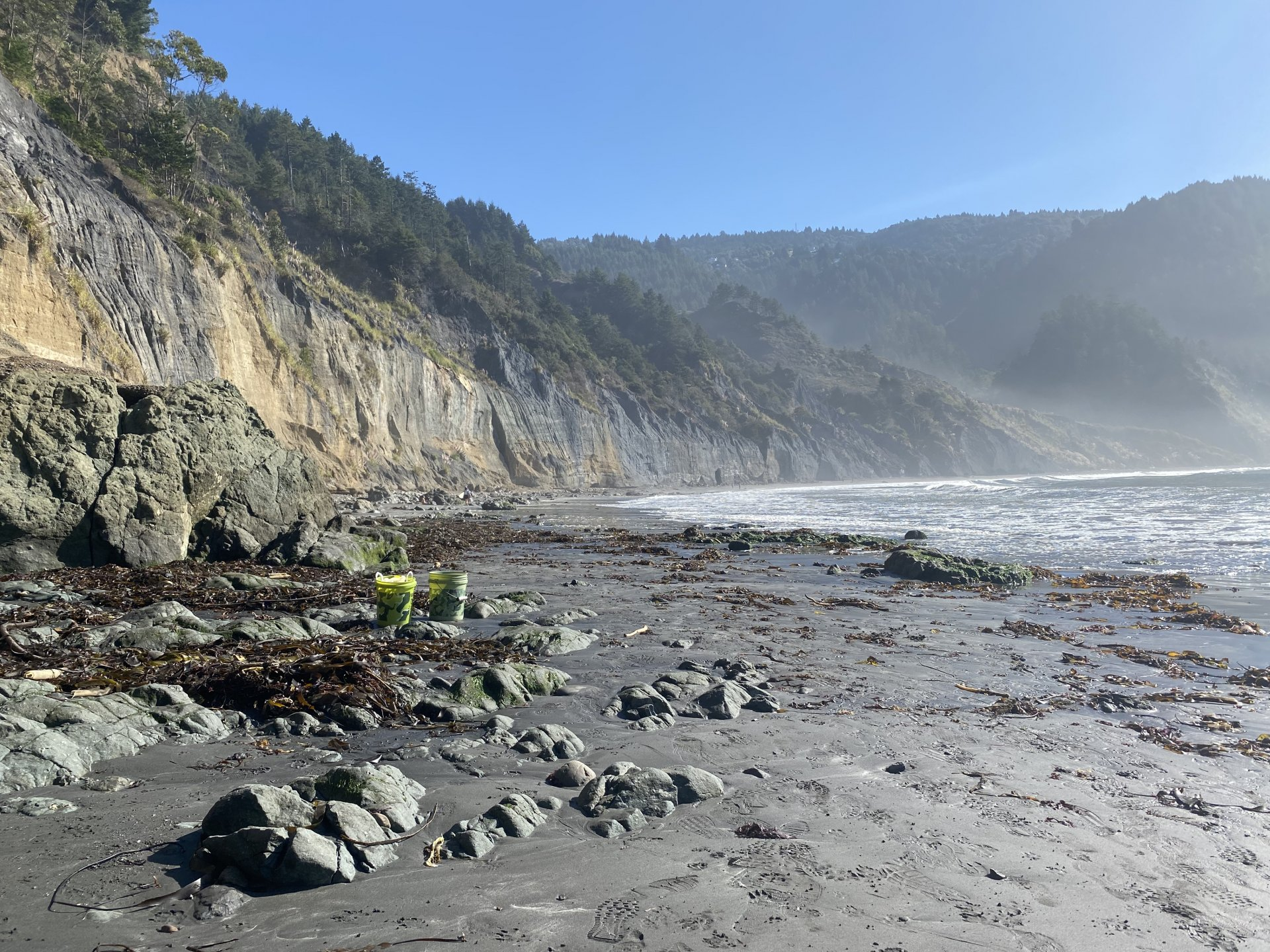 The beautiful beaches in Humboldt County are the focus of Coastal Clean Up Month. Even though most trash originates on land, everything flows to our beaches and becomes a problems for marine life.