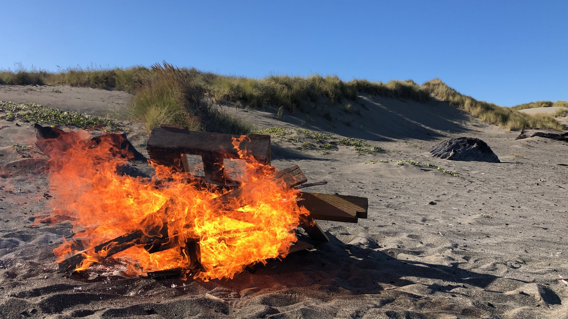 On Oct. 9 some HSU students spent their time at Samoa Beach, keeping warm by a small bonfire. Fire is just one of the heat source alternatives. | Photo by Chelsea Wood