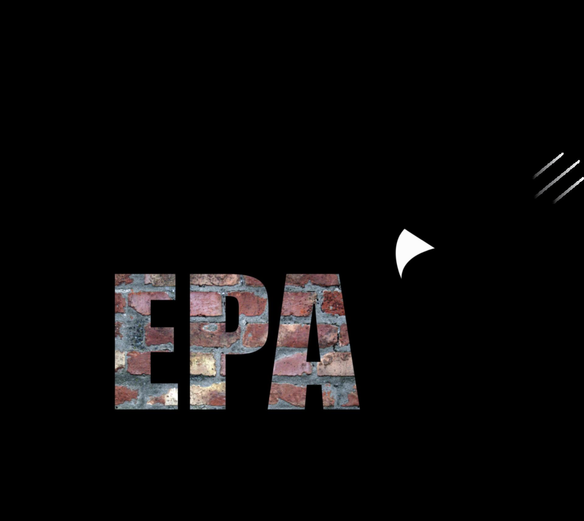 DSEpa-1-1024x914
