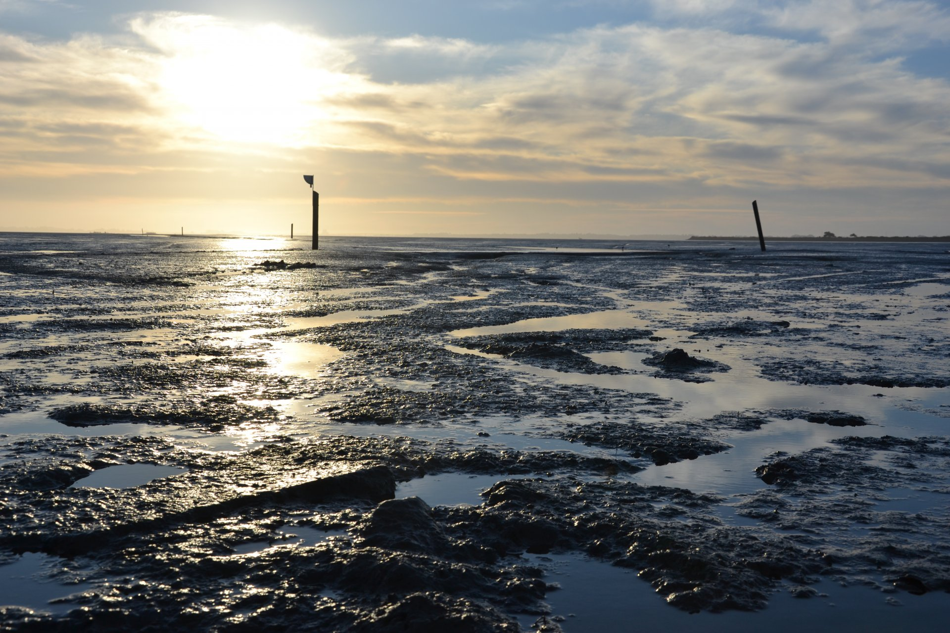 The evening sun reflects of dioxin contaminated mud at low tide on Dec. 1 at the Arcata Bay shoreline | Photo by Jen Kelly