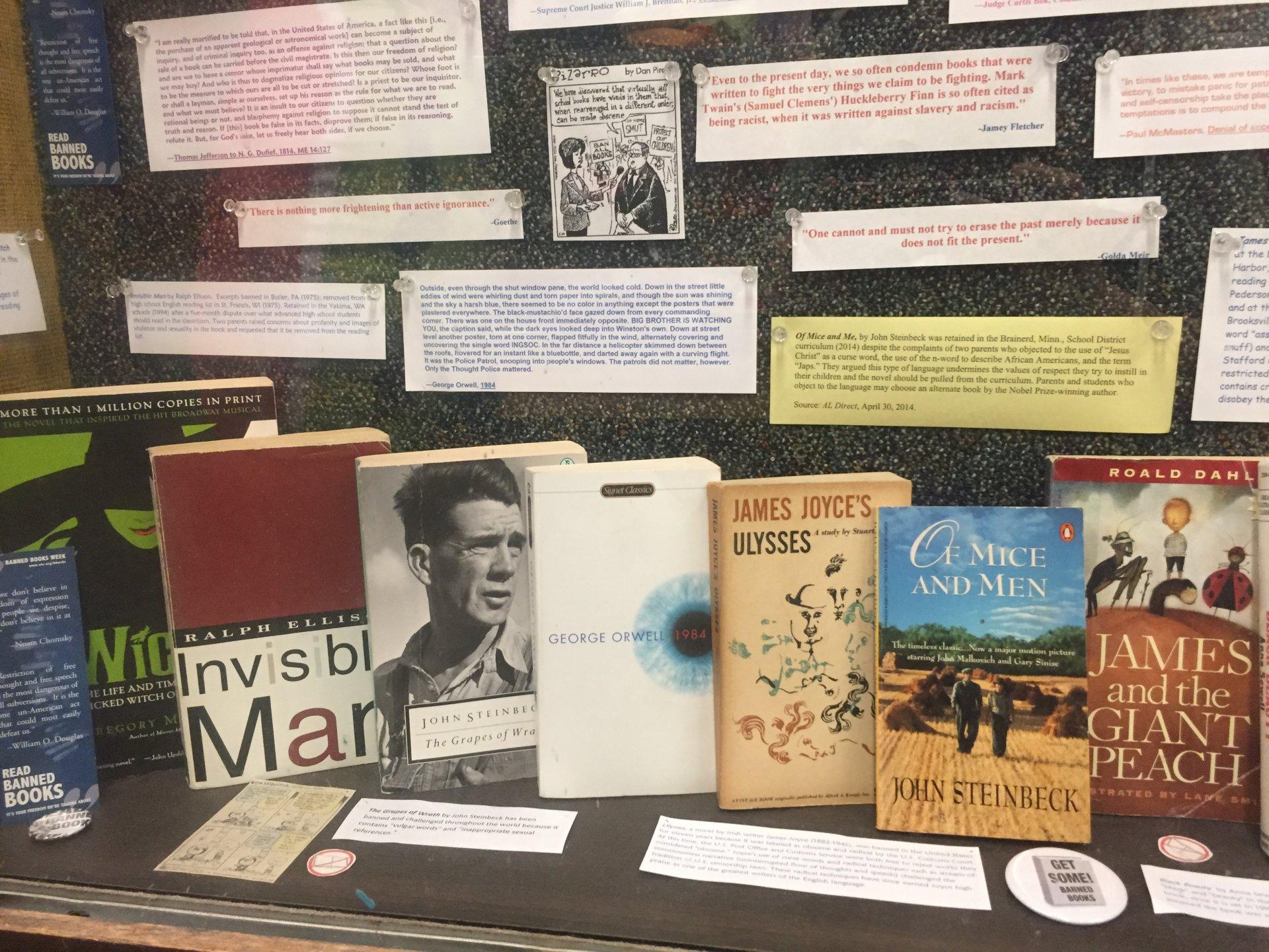 Library including some popular banned books titles. Photo credit: Lora Neshovska
